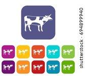 switzerland cow icons set ...   Shutterstock . vector #694899940