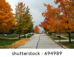 tree lined street on clear fall ... | Shutterstock . vector #694989