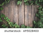 beautiful green vine on old... | Shutterstock . vector #695028403