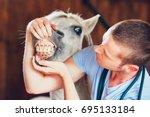 Veterinary Medicine At Farm....