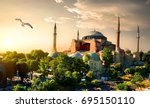 Bird And Hagia Sophia At Sunse...
