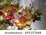 vietnamese flower silk... | Shutterstock . vector #695157868