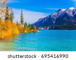 picturesque turquoise abraham... | Shutterstock . vector #695416990