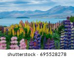landscape at lake tekapo and... | Shutterstock . vector #695528278
