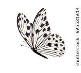 beautiful white butterfly... | Shutterstock . vector #695531614