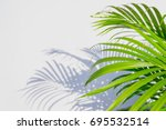palm leaf and shadows on a... | Shutterstock . vector #695532514