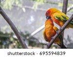 parrot kiss | Shutterstock . vector #695594839