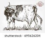 breeding cow. grazing cattle....   Shutterstock .eps vector #695626204