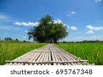 the bamboo bridge across rice... | Shutterstock . vector #695767348