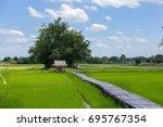 the bamboo bridge across rice... | Shutterstock . vector #695767354