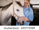 female veterinarian stroking... | Shutterstock . vector #695775589