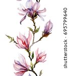 pink magnolia flowers on a twig ... | Shutterstock . vector #695799640