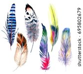 watercolor bird feather pattern ... | Shutterstock . vector #695802679