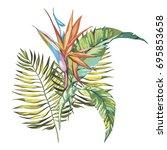 tropical flowers strelitzia... | Shutterstock .eps vector #695853658