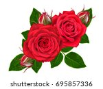 flower composition. a bud of a... | Shutterstock . vector #695857336