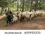 A Shepherd Keeps His Sheep In...