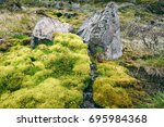 green moss in the mountains of... | Shutterstock . vector #695984368