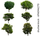 set od tree isolated on white | Shutterstock . vector #696046270