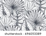 vector seamless pattern with... | Shutterstock .eps vector #696053389