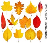 Stock photo collection beautiful colorful autumn leaves isolated on white background 696072760