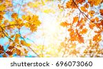 autumn landscape. autumn oak... | Shutterstock . vector #696073060