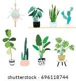 doodle house plants