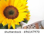 background with a bouquet of... | Shutterstock . vector #696147970