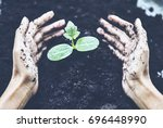 farmer's hands holding and...   Shutterstock . vector #696448990