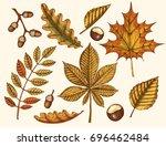 autumn leaves. vector hand... | Shutterstock .eps vector #696462484