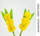 flower sacred flower marigold | Shutterstock . vector #696475303