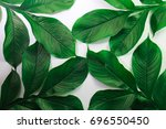 green leaf pattern natural and... | Shutterstock . vector #696550450
