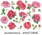 set of red and pink roses  in... | Shutterstock . vector #696572848