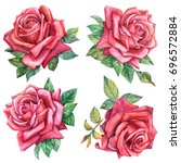 set of beautiful roses and... | Shutterstock . vector #696572884