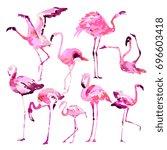beautiful watercolor flamingos  ... | Shutterstock .eps vector #696603418