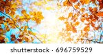 Autumn landscape. Autumn oak leafes, very shallow focus. Wide panorama format.