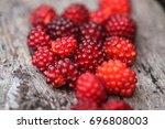 still life wild red summertime...   Shutterstock . vector #696808003