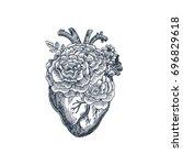tattoo anatomy vintage... | Shutterstock .eps vector #696829618