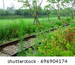 A Railway With Trees And...