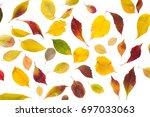 Autum Season Yellow Leaves...