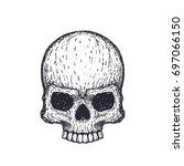 human skull on white  hand...   Shutterstock .eps vector #697066150