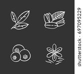 spices chalk icons set. bay... | Shutterstock .eps vector #697095229