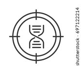 aim on dna chain linear icon.... | Shutterstock .eps vector #697122214
