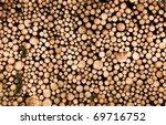 Wood Pile Closeup On  Tree...