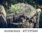 strong and development as... | Shutterstock . vector #697195360