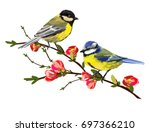beautiful vector illustration... | Shutterstock .eps vector #697366210