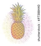 hand drawn decorative pineapple....   Shutterstock .eps vector #697388440