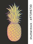 hand drawn decorative pineapple....   Shutterstock .eps vector #697398730