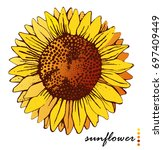 sunflower flower isolated... | Shutterstock .eps vector #697409449