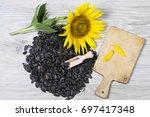 sunflower seeds   Shutterstock . vector #697417348