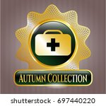gold badge with medical...   Shutterstock .eps vector #697440220